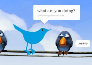 cum se foloseste twitter